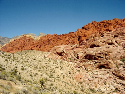 Red Rock 2014 003