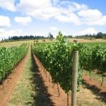 オレゴン州のワイン