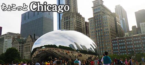 ちょこっとシカゴ 2016
