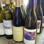 カリフォルニアワインカントリーの旅 サンタ・バーバラ編 1