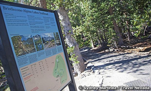 ブリストルコーン・アルパインレイクス・トレイル Bristlecone/Alpine Lakes Trail