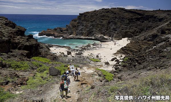 ハロナ・コーブ Halona Cove
