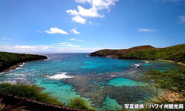 ハナウマ湾(ハナウマ・ベイ) Hanauma Bay