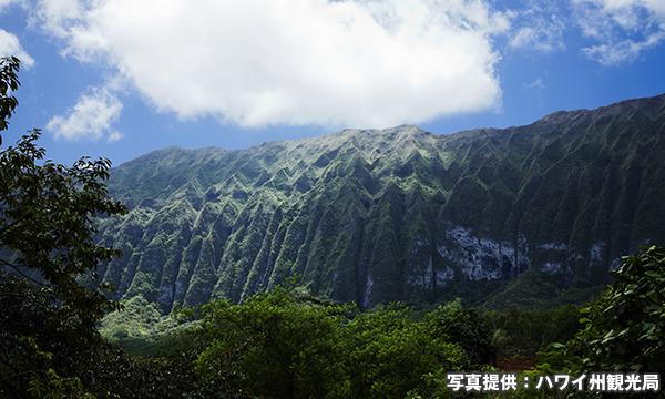 コオラウ山脈 Koʻolau Range