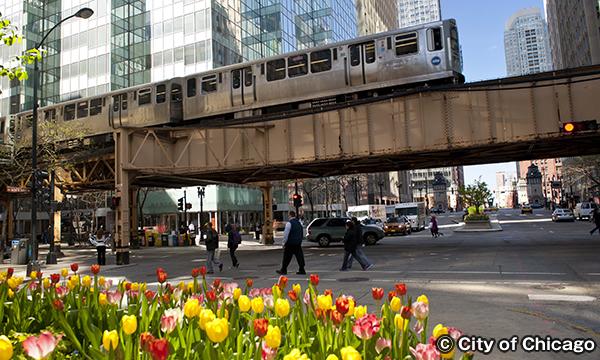シカゴ'L' Chicago 'L'