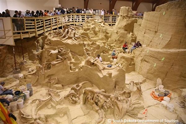 発掘が続くマンモスサイト