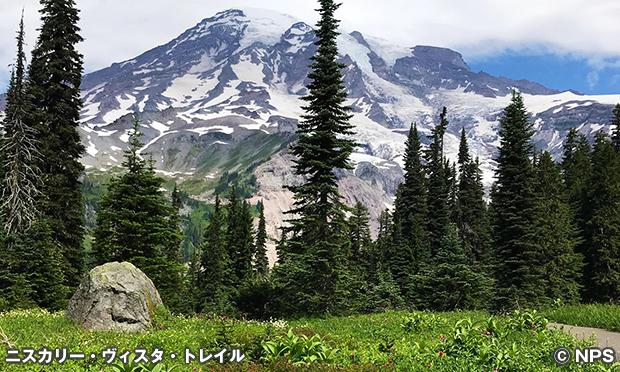 ニスクアリー・ビスタ・トレイル Nisqually Vista Trail