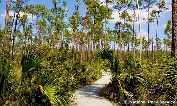 パインアイランド・トレイル Pine Island Trails