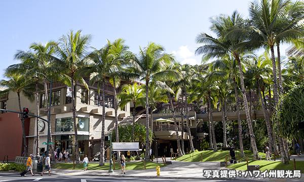 ロイヤル・ハワイアン・センター Royal Hawaiian Center