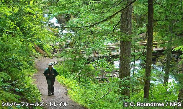 シルバーフォールズ・トレイル Silver Falls Trail