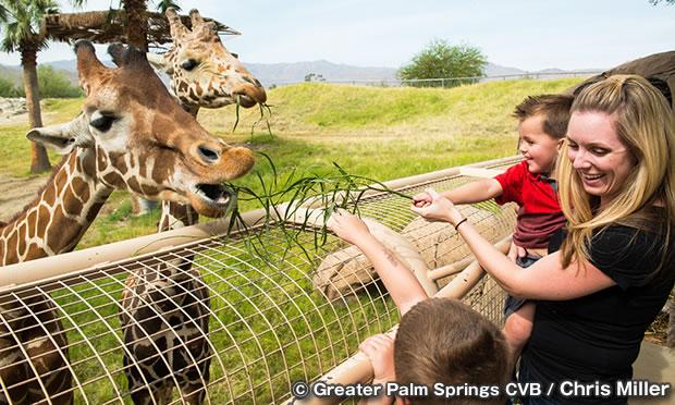 ザ・リビング・デザート・ズー&ガーデンズ The Living Desert Zoo and Gardens