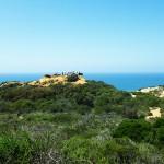 南カリフォルニアの旅 2016 トーリー・パインズ・ステート保護区