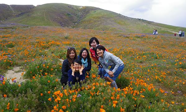 南カリフォルニアの旅 2016 エリザベス・レイク付近