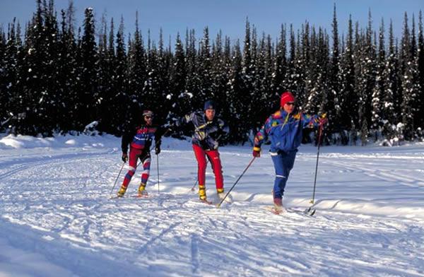 白銀の世界を滑走する スキー