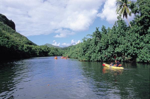 ジャングルを流れる川 ワイルア川