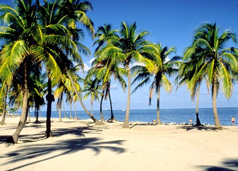 Homestead Florida To Miami Beach