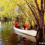 アイランド アウトドアズ でカヌーを体験