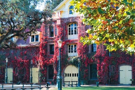 ナパ・バレー Napa Valley カリフォルニア・ワインのメッカ