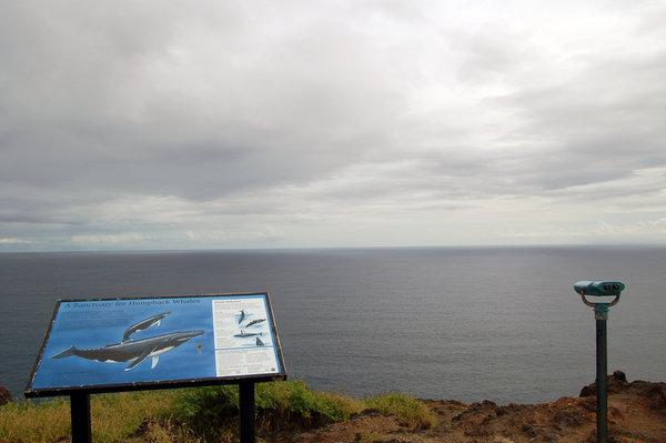 マカプウ ポイント(マカプウ岬) Makapuu Point