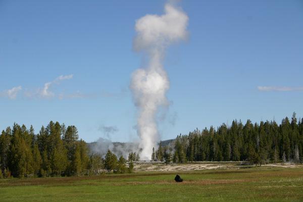 イエローストーン国立公園 Yellowstone NP