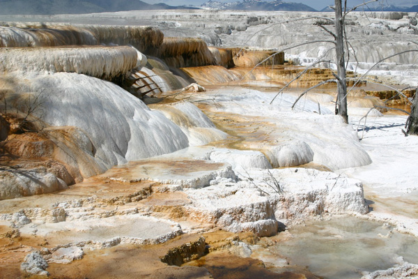 マンモス・ホット・スプリングス Mammoth Hot Springs