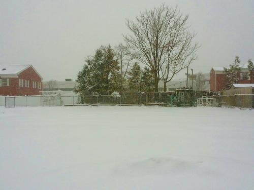 雪、なごり雪?