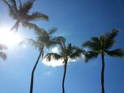 Arashi Blast in Hawaii その2